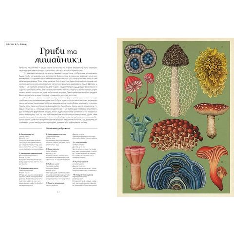 Книга Ботанікум - Виллис Кеси - /*Photo|product*/